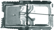Ratoeira Ferro Pequena Zincada 247 1060314102